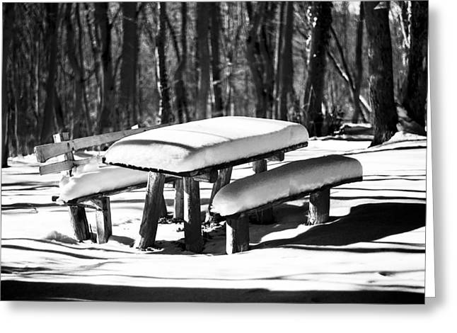 Snowy Day Greeting Cards - Bench with snow in forest Greeting Card by Newnow Photography By Vera Cepic