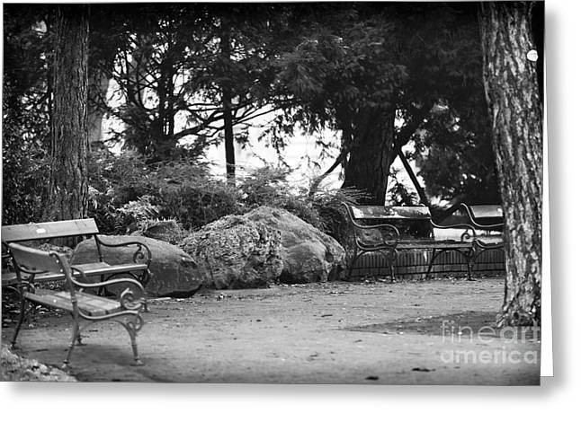 Park Benches Greeting Cards - Benches in Vienna Greeting Card by John Rizzuto