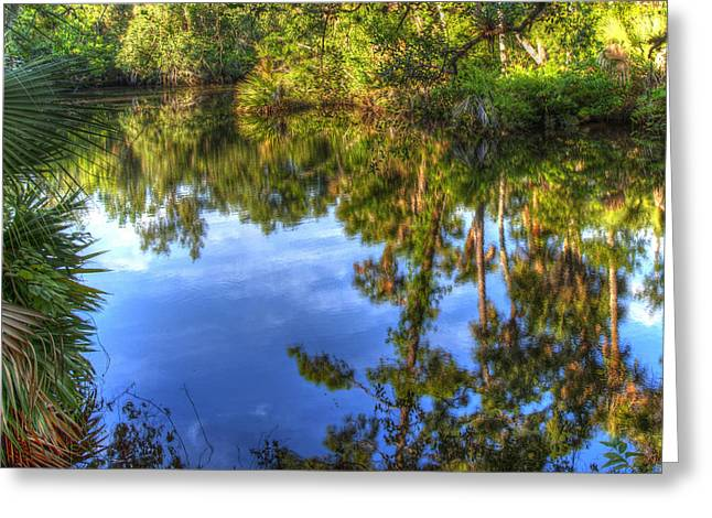 St. Lucie River Greeting Cards - Bend in the St Lucie River Greeting Card by Larry Olsson
