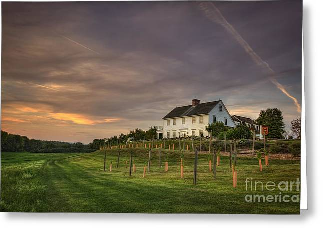 Belchertown Greeting Cards - Beneath An Evening Sky Greeting Card by Evelina Kremsdorf
