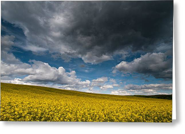 Landscape Oil Photographs Greeting Cards - Beneath the gloomy sky Greeting Card by Davorin Mance
