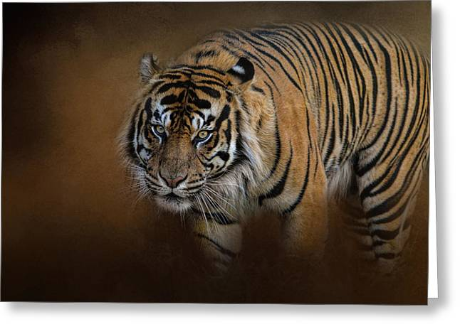 Wildcats Greeting Cards - Bengal Stare Greeting Card by Jai Johnson