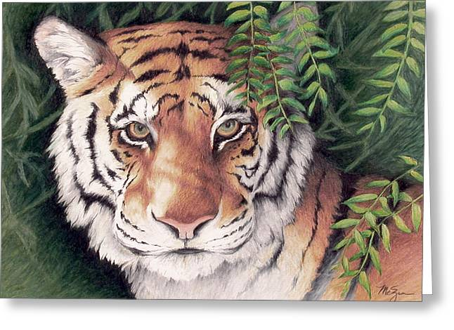 Bengal Drawings Greeting Cards - Bengal Tiger Greeting Card by Mary Zins