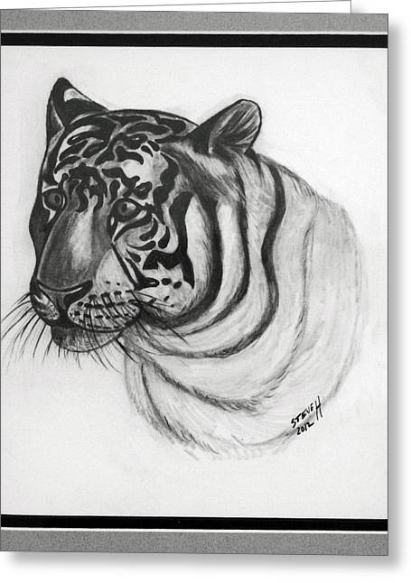 Bengal Drawings Greeting Cards - Bengal Tiger Greeting Card by Stephen Helton