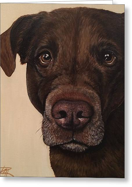 Mixed Labrador Retriever Paintings Greeting Cards - Benji Greeting Card by Ana Marusich-Zanor