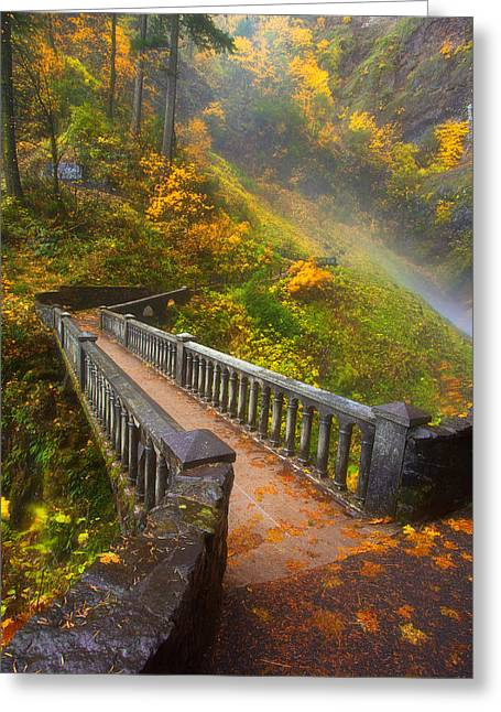 Height Greeting Cards - Benson Bridge Fall Colors Greeting Card by Darren  White