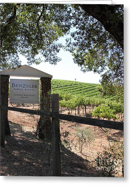 Fruit And Wine Greeting Cards - Benziger Winery In The Sonoma California Wine Country 5D24592 vertical Greeting Card by Wingsdomain Art and Photography