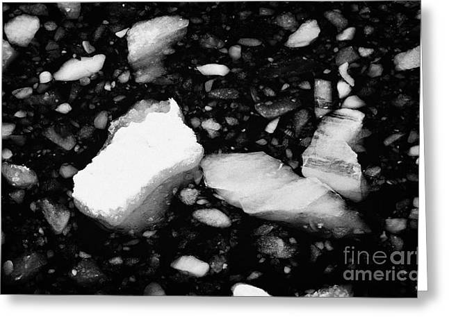 Bergy-bit Greeting Cards - bergy bits and brash ice in the lemaire channel Antarctica Greeting Card by Joe Fox