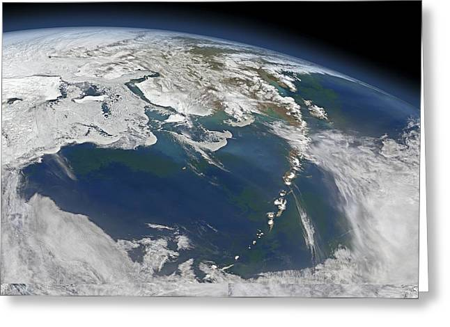 Algal Bloom Greeting Cards - Bering Sea, satellite image Greeting Card by Science Photo Library