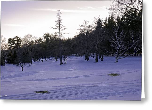 Wintry Photographs Greeting Cards - Berkshires Winter 5 - Massachusetts Greeting Card by Madeline Ellis