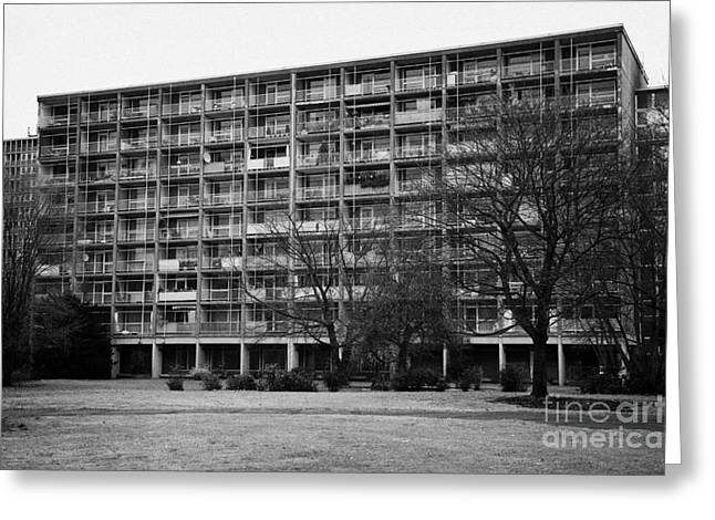 Berlin Germany Greeting Cards - Berlin apartment block Germany Greeting Card by Joe Fox