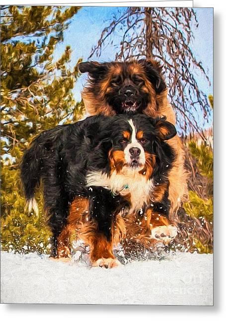 Leonberger Greeting Cards - Bernese Mountain Dog and Leonberger Winter Fun Greeting Card by Gary Whitton