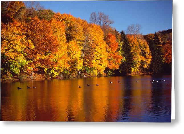 Paint Effect Greeting Cards - Bernharts Dam fall 008 Greeting Card by Scott McAllister