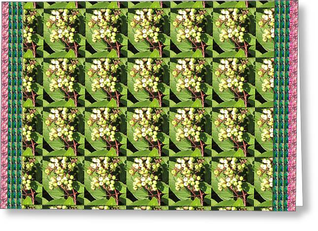 Berry Greeting Cards - Berry Berry Green Pattern nature photography n beautiful border Greeting Card by Navin Joshi