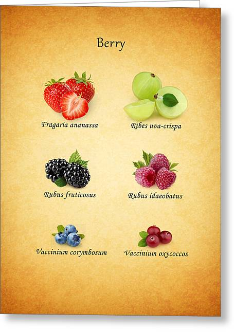 Berry Greeting Cards - Berry Greeting Card by Mark Rogan