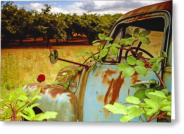 Filbert Greeting Cards - Berry Old Truck 2 Greeting Card by Jean Noren