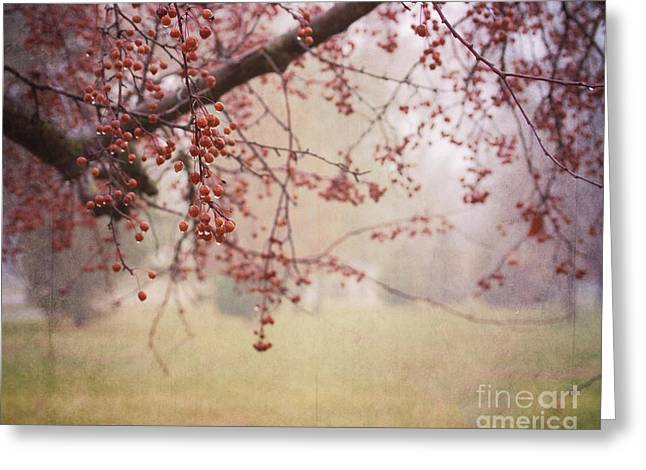 Nature Greeting Cards - Berry Tree Greeting Card by Pam  Holdsworth