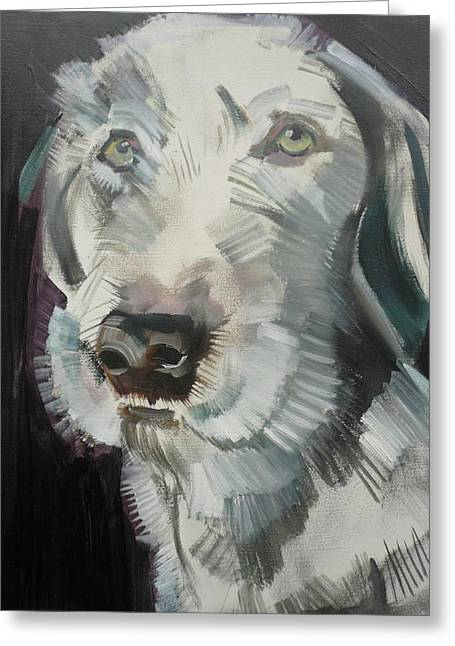 Dog Head Greeting Cards - Bertie, 2012 Oil On Board Greeting Card by Sally Muir