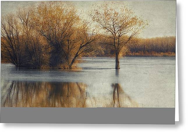 Wildlife Refuge. Digital Art Greeting Cards - Beside Still Waters-Color Greeting Card by Priscilla Burgers