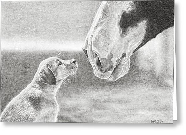 Puppies Drawings Greeting Cards - Best Buds Greeting Card by Frances Vincent