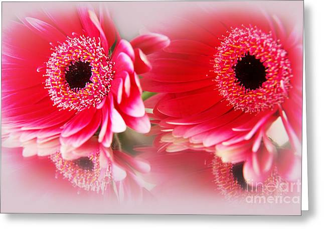 Best Flower Images Greeting Cards - Best Friends Greeting Card by Eden Baed