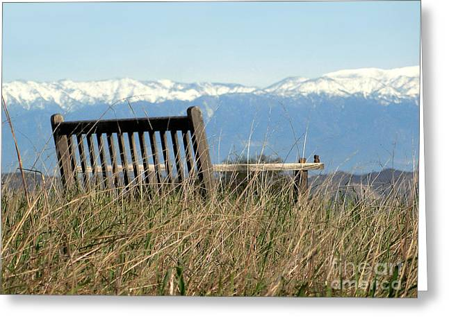Snow Capped Greeting Cards - Best Seat in the House Greeting Card by Patrice Dwyer