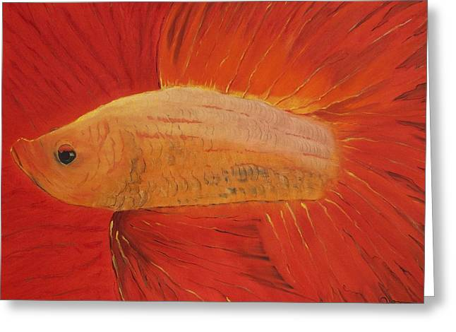 Betta Greeting Cards - Betta Radiance Greeting Card by Guillaume Peribere