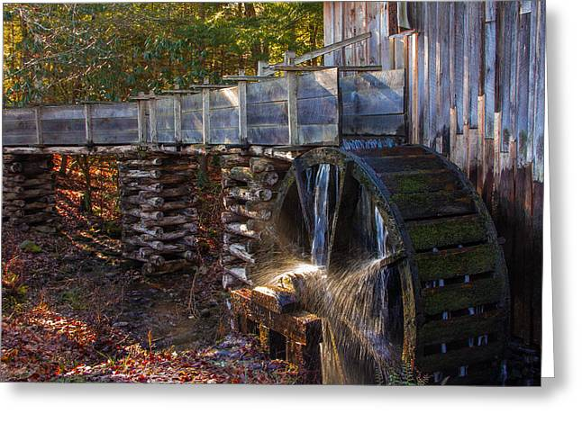 Fall Photos Ceramics Greeting Cards - Better Day Greeting Card by Michael J Samuels