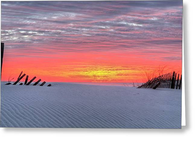 South West Florida Greeting Cards - Between the Fence Greeting Card by JC Findley