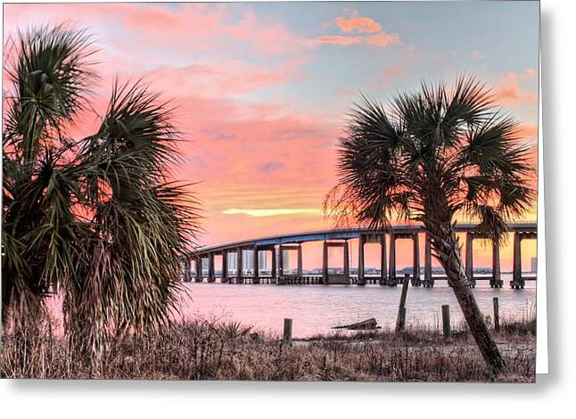 Navarre Beach Greeting Cards - Between the Palms Greeting Card by JC Findley