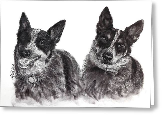 Queensland Blue Heeler Greeting Cards - Beverly Feeds the Blues Greeting Card by Michelle Wolff