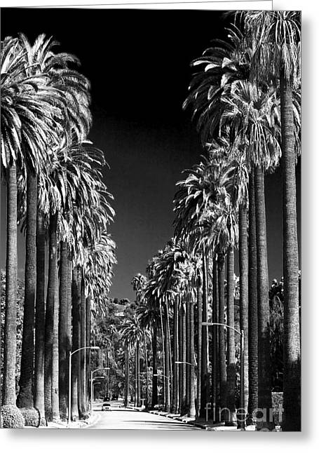 Beverly Hills Greeting Card by John Rizzuto