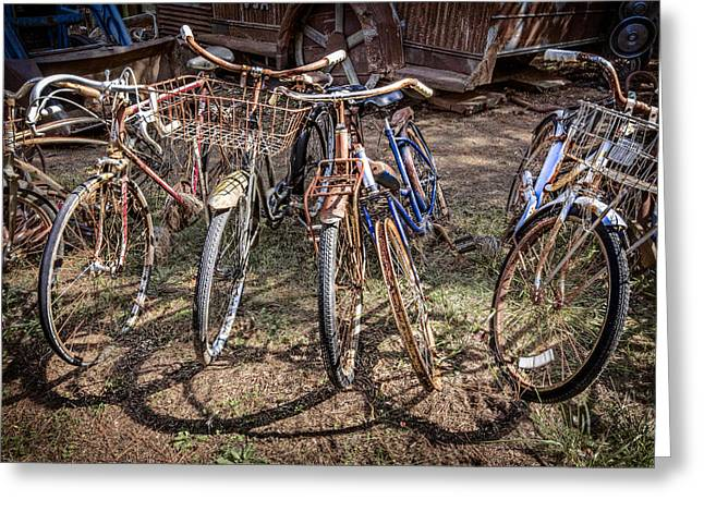 French Bicycle Shop Greeting Cards - Bevy of Bicycles Greeting Card by Debra and Dave Vanderlaan