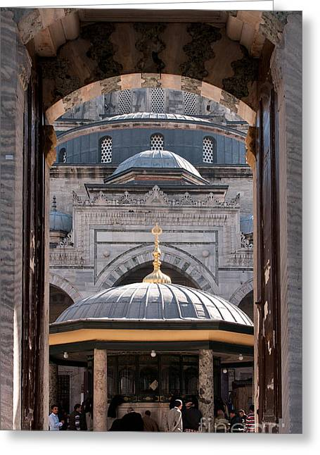Entrance Door Greeting Cards - Beyazit Cat Greeting Card by Rick Piper Photography