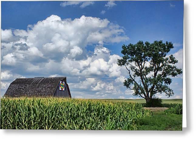 Beyond The Corn Greeting Card by Nikolyn McDonald