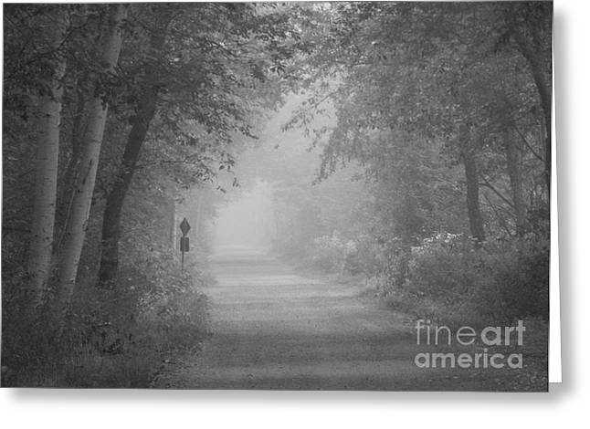 Annapolis Valley Greeting Cards - Beyond the Mist Greeting Card by Karen Cook