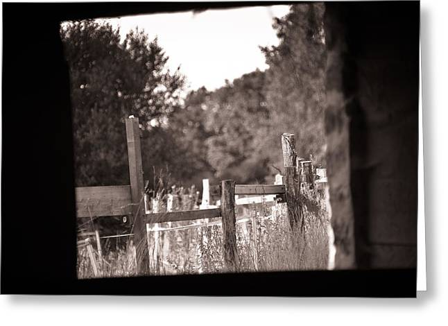 Beyond the Stable Greeting Card by Loriental Photography