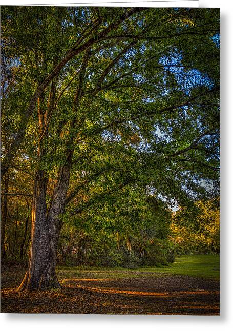 Green Leafs Greeting Cards - Beyond the Yard Greeting Card by Marvin Spates