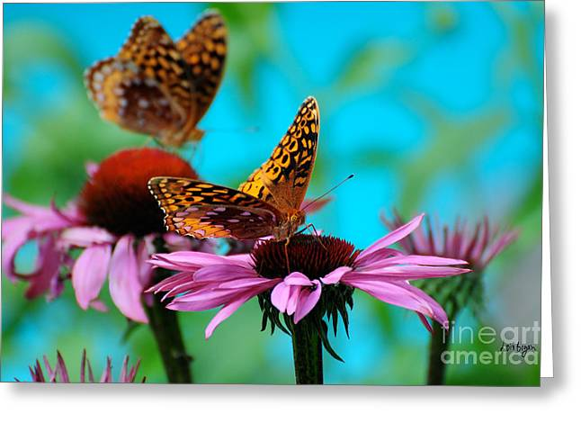 Butterfly On Flower Greeting Cards - BFF Best Friend Flutterbyes Greeting Card by Lois Bryan
