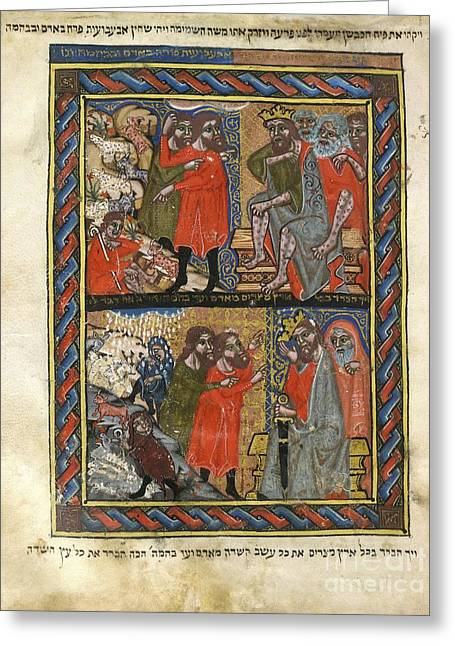 Prophet Moses Greeting Cards - Biblical Plagues, 14th-century Manuscript Greeting Card by British Library