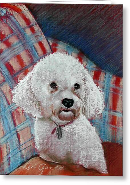 Small Dog Pastels Greeting Cards - Bichon Lexi Greeting Card by Lenore Gaudet