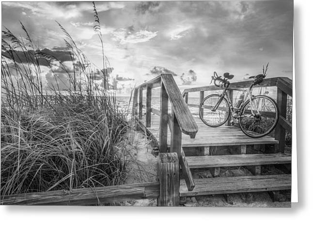 Sanddunes Greeting Cards - Bicycle at the Beach in Black and White Greeting Card by Debra and Dave Vanderlaan