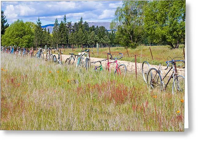 Pushbike Greeting Cards - Bicycle Graveyard Greeting Card by Nicholas Blackwell