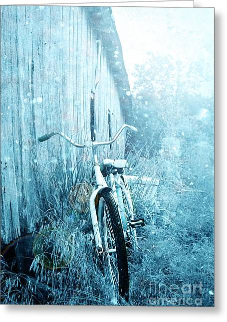Barn Yard Greeting Cards - Bicycle in Blue Greeting Card by Stephanie Frey