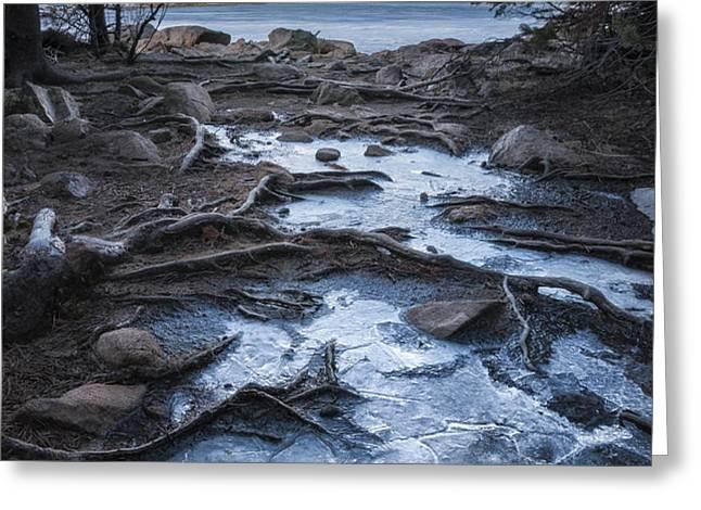 Bierstadt Lake Early Ice Greeting Card by Michael Van Beber