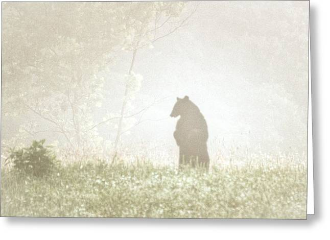 Smoky Pyrography Greeting Cards - Big Bear Greeting Card by Lori Douthat