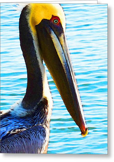 Pelican Greeting Cards - Big Bill - Pelican Art By Sharon Cummings Greeting Card by Sharon Cummings