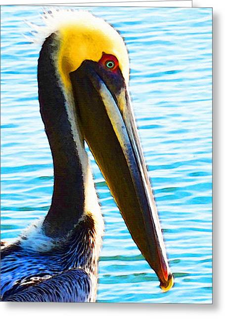 Big Bill - Pelican Art By Sharon Cummings Greeting Card by Sharon Cummings