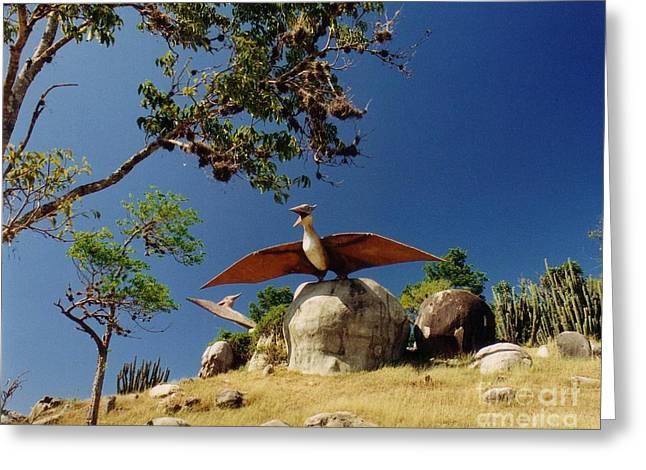 Santiago Cuba Greeting Cards - Big Bird Greeting Card by John Malone