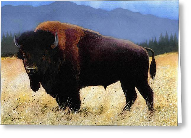 Montana Digital Art Greeting Cards - Big Bison Greeting Card by Robert Foster